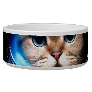 Cat astronaut bowl