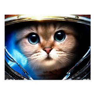 Cat astronaut postcard