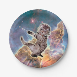 Cat astronaut - space cat - funny cats - cute cats paper plate  sc 1 st  Zazzle : cat paper plate - pezcame.com