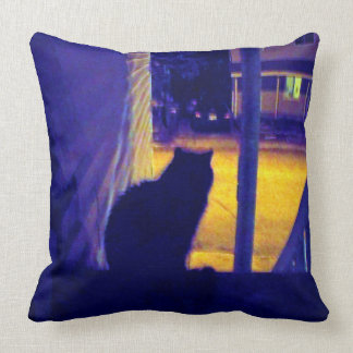 Cat at Night in the Old Neighborhood Pillows