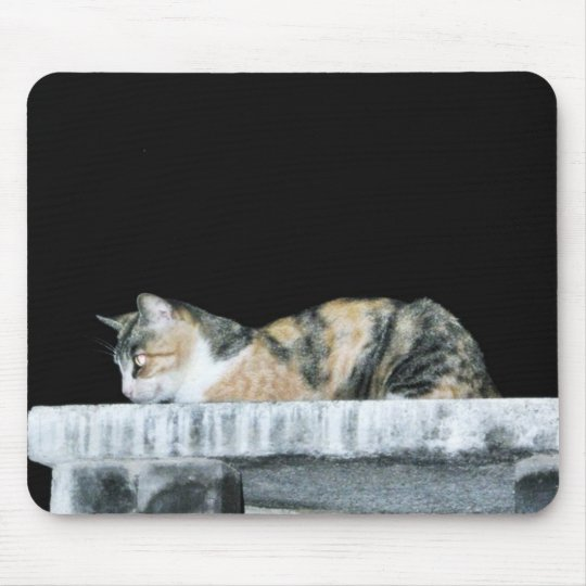 Cat At Night Mouse Pad