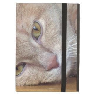 cat at rest iPad air cover