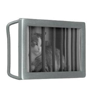 Cat at Window Black & White Photo Rectangular Belt Buckle