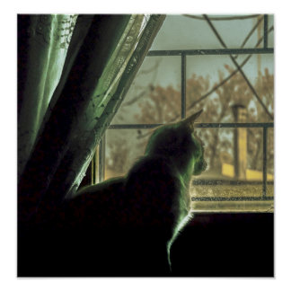Cat at Window House Poster