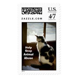 Cat at window postage stamp