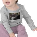 Cat (Baby Tee)