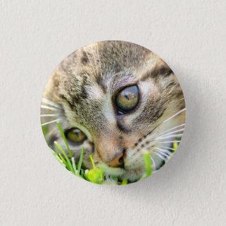 Cat badge pinback button