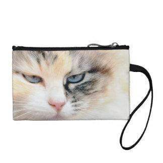 Cat Coin Wallet