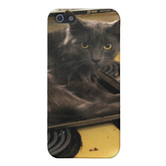 Cat Baked Case For iPhone SE/5/5s