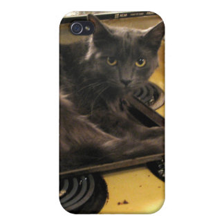 Cat Baked iPhone 4 Cover