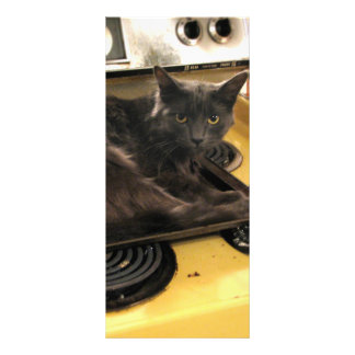 Cat Baked Personalized Rack Card