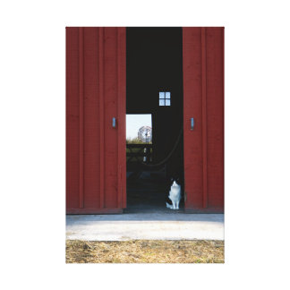 Cat Barn Canvas Print