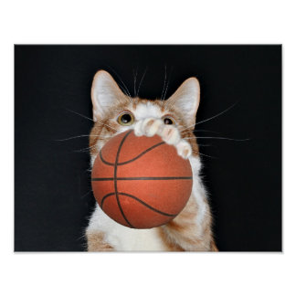 Cat basketball poster