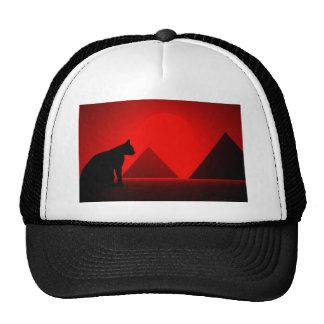 Cat before pyramid gorro