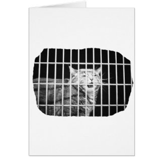 Cat behind bars with mouth open mean kitty card