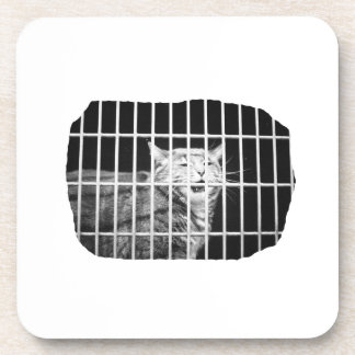 Cat behind bars with mouth open mean kitty beverage coasters
