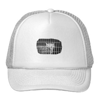 Cat behind bars with mouth open mean kitty mesh hats