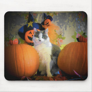 Cat Between Pumpkins Mouse Pad