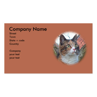 Cat Big Eyes Double-Sided Standard Business Cards (Pack Of 100)