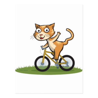 Cat Biker Postcards