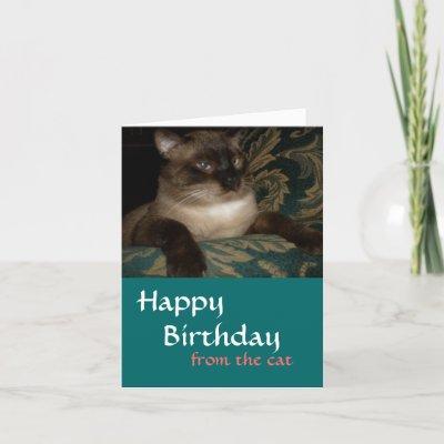 Cat Birthday Card from Zazzle.com