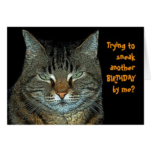 Cat Birthday Wishes Card