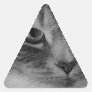 Cat (Black & White) Triangle Sticker