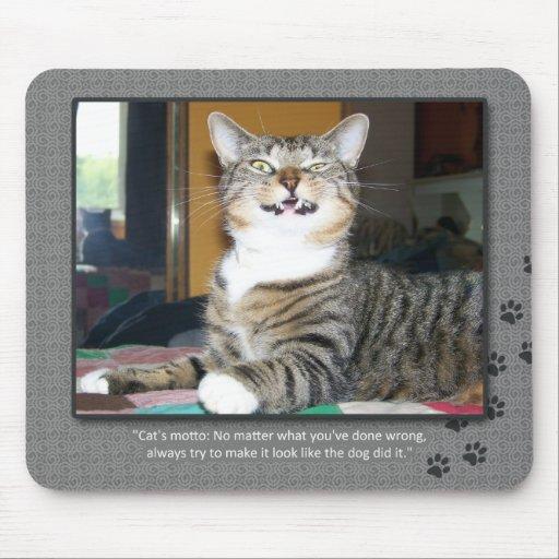 Cat Blames Dog Mouse Pad