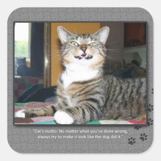 Cat Blames Dog Square Sticker