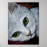 "CAT BLANCO 8"" X 11"" poster"