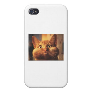 Cat Blows Case For iPhone 4
