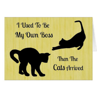 Cat Boss Note Cards