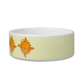 Cat Bowl - Mr. Sunshine