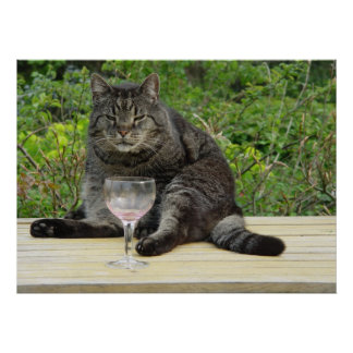 Cat 'Bram' on the table with a wine glass Poster