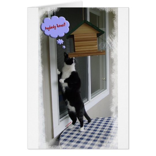 Cat Burglar Card