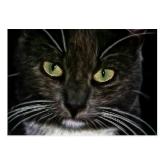 Cat Large Business Cards (Pack Of 100)
