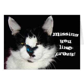 CAT & BUTTERFLY Missing You Card