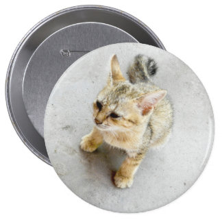 cat 4 inch round button