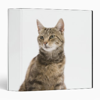 Cat by bowl 3 ring binder