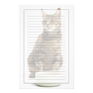 Cat by bowl stationery