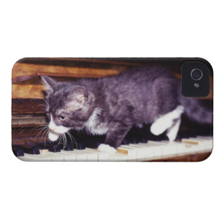 cat Case-Mate iPhone 4 case