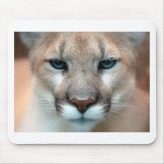 Cat Cats wild stripe print diy Anniversaries Mouse Pad