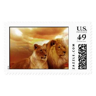 Cat Cats wild stripe print diy Anniversaries Stamp