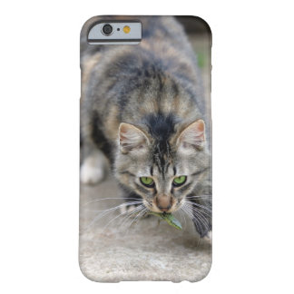 cat caught a lizard barely there iPhone 6 case