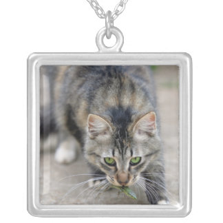 cat caught a lizard silver plated necklace