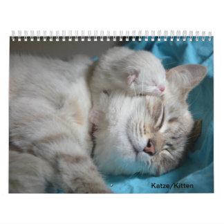 Cat/cements Calendar