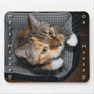 Cat chasing mouse funny mouse pad