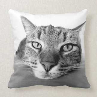 Cat Chill Out Throw Pillow