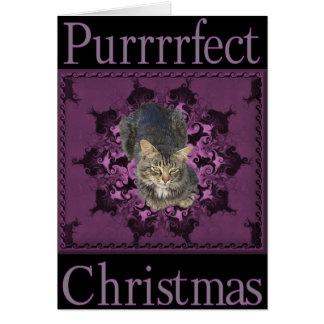 Cat Christmas Greetings card