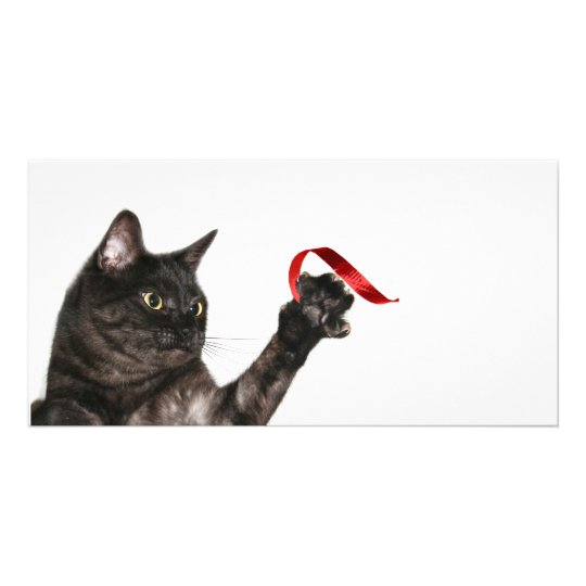 Cat Christmas ribbon Card